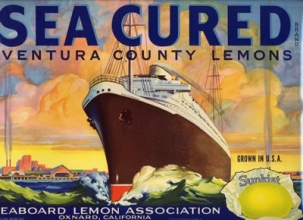 """Fruit crate label, """"Sea Cured"""" brand, 1937. Collection of the Oakland Museum of California, Museum Purchase."""