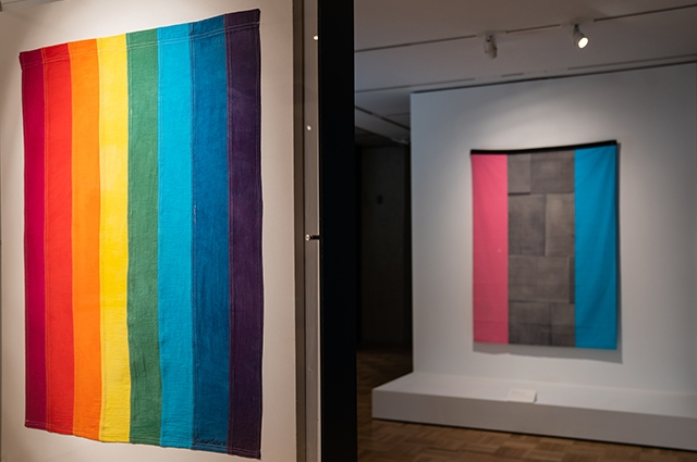 A rainbow flag hangs in the foreground while a blue, pink, and black flag hangs in the background